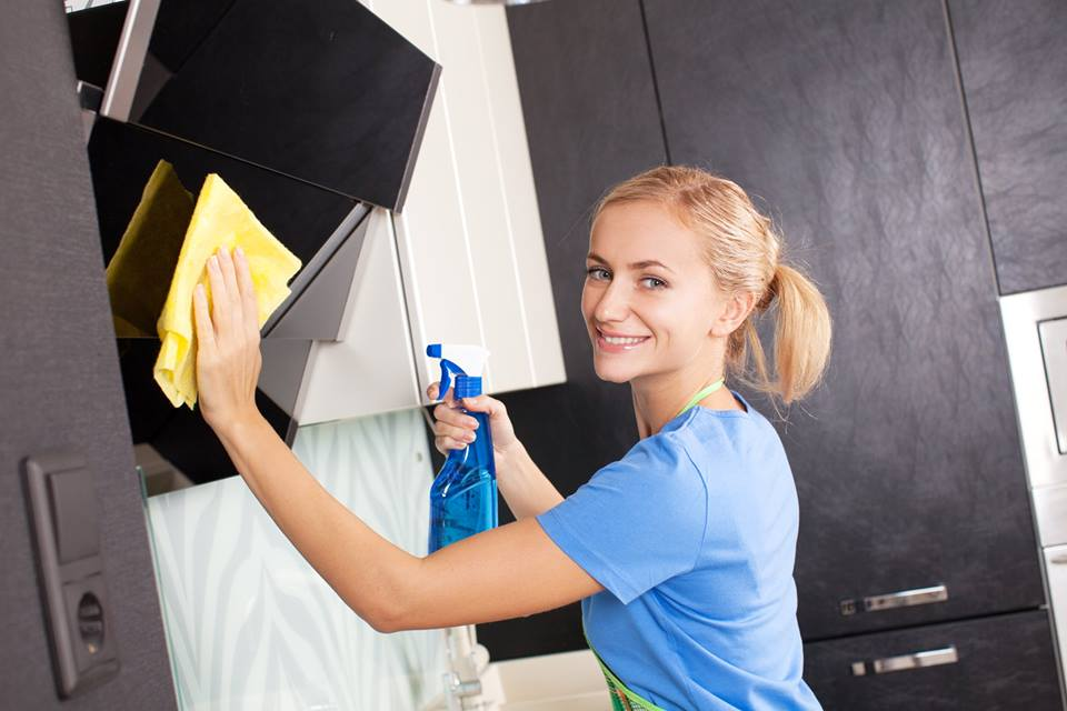 Davisburg MI Professional House Cleaners